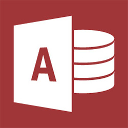 Access Discounted (Includes Software Assurance)