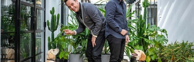Ant and Dec star in Guide Dogs online promotion