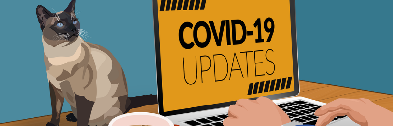 How charities are coping with COVID-19