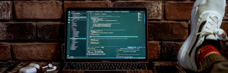 The basics of web development
