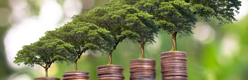 Ten ways to ensure your charity is sustainable