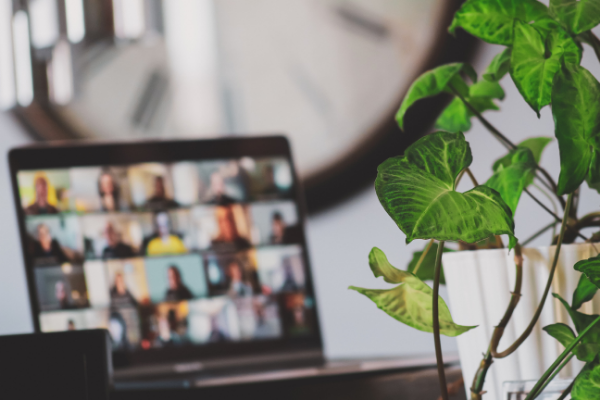 Working from home: how to support your team