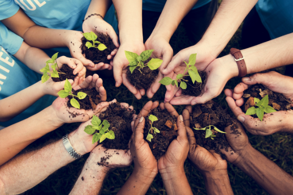 How to get businesses involved in volunteering