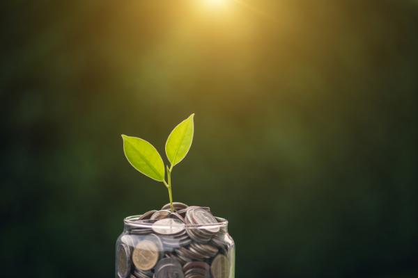 How to prevent financial mismanagement